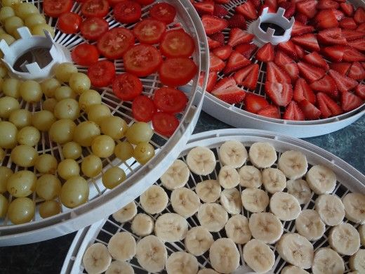 Nesco American Harvest Dehydrator Product Review