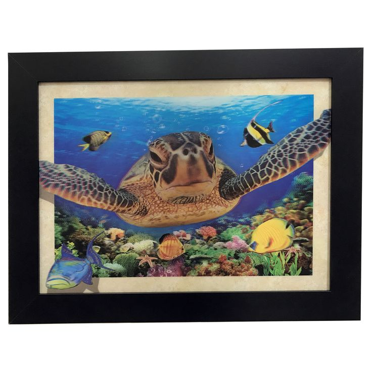 Creative Motion Industries 3 D Image with Frame with Turtles and Fish Under the World Horizontal