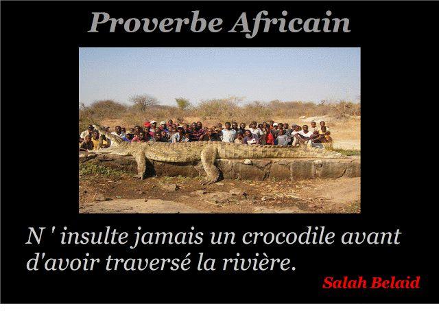 La Pensée Du Jour: Le crocodile  ( Proverbe Africain)