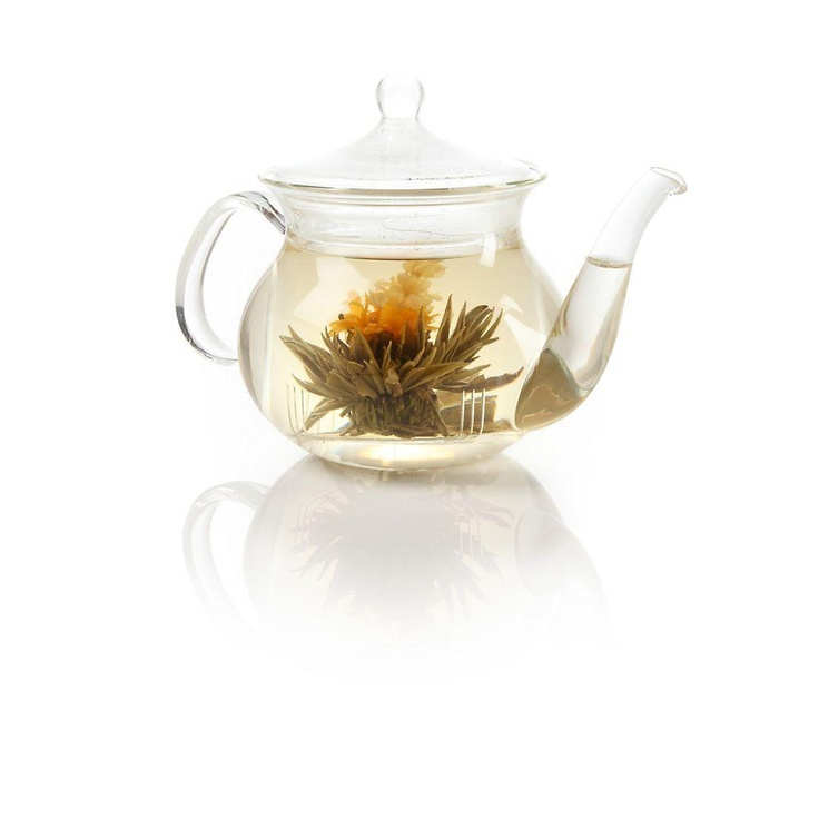 17 best images about teavana on pinterest tea cups herbal teas and friends - Teavana teapots ...