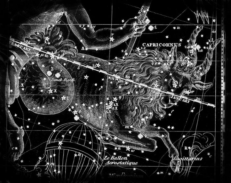 Constellation of Capricorn