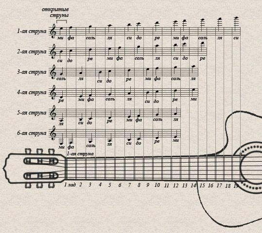 Как читать ноты?