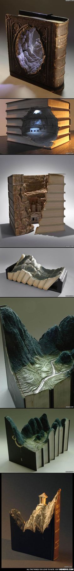 . Always best to never judge a book by its cover. Amazing landscapes carved into books
