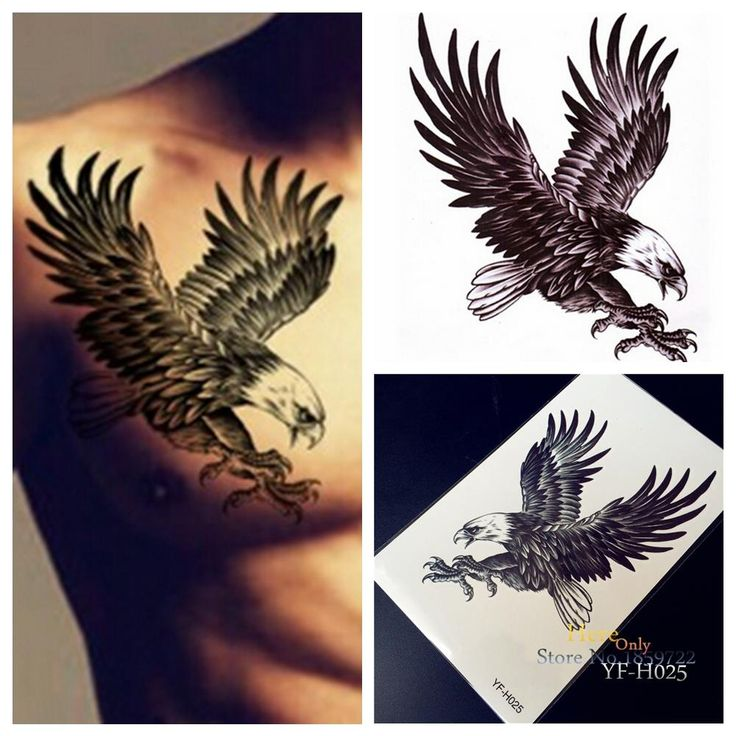 Tattoo Quotes Hawk: Best 25+ Eagle Tattoos Ideas On Pinterest
