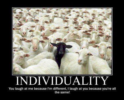 The individual… the black sheep  #Americanfamilies #Blacksheep #Collectivism #Individualism #IndividualisticvsCollectivistic #Individuality #Laovejanegra #LatinAmericanfamilies