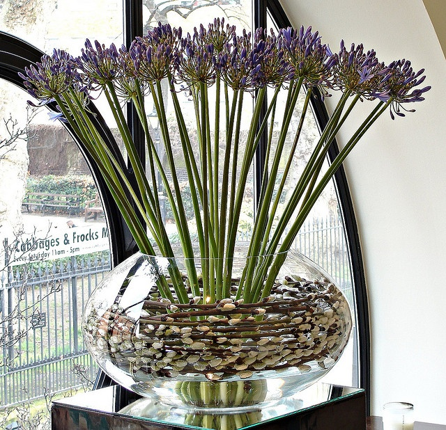 A pin cushion, as often used in ikebana, is what held the Agapanthus stems in place.