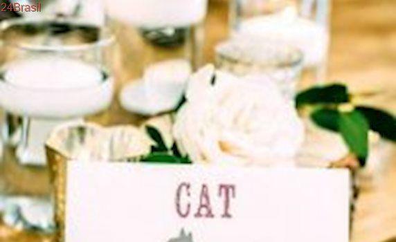 Casal de veterinários surpreende em sua festa de casamento ao levar gatos resgatados