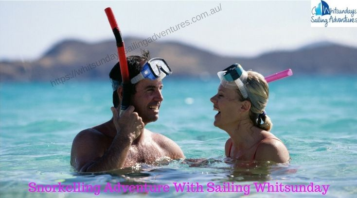 Are you Looking for a new kind of adventure? Then pick the world's best #snorkeling adventures with #Sailing #Whitsunday. We have expert team for every Adventure. we use best #Snorkel equipment and stinger suits in all the trip. All our vessels carry floating devices so even if you can't swim there is no reason why you can't see the amazing underwater world teaming with marine life.