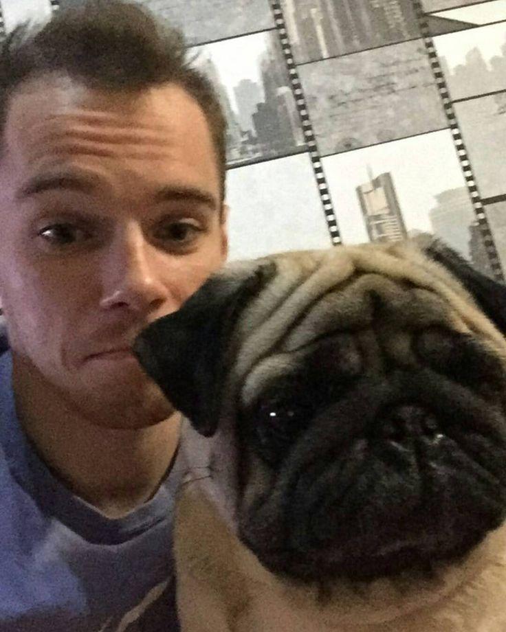 @verniaiev.gym This photo is the best!.. Twins!!  #olegverniaiev #verniaiev #pug #pugsofinstagram #ОлегВерняев