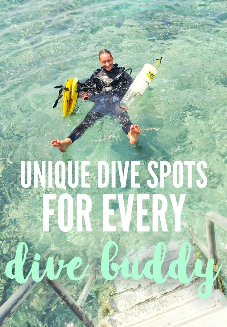 Dive the Virgin Islands Complete Guide to Diving and Snorkeling Dive the Virgin Islands Complete Guide to Diving amp Snorkeling