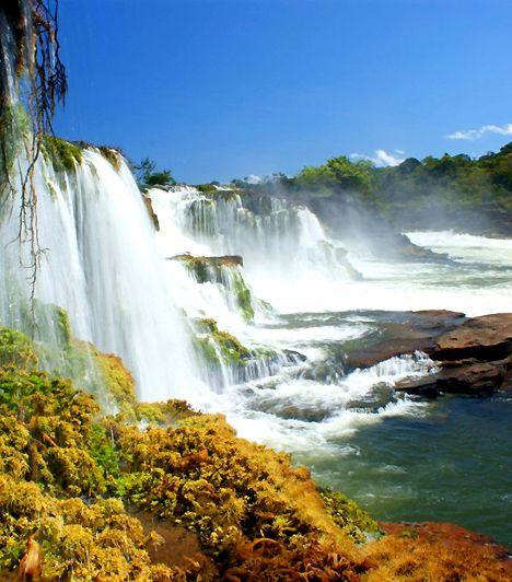 Amazónia Nemzeti Park, Brazília