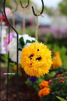 Make flower pomanders with wiffle balls in about 10 minutes!! Hang the sunflowers around your home or use them for party decor. Easy and stunning! These are also called flower kissing balls. You're never going to belive how quick and easy this DIY decor craft is.