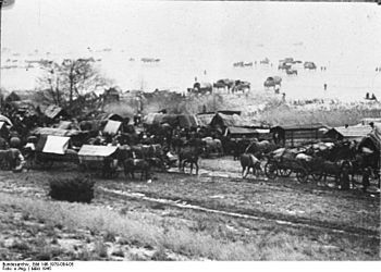 Updated and revised the ManyRoads Eastern German Expulsion & Flight information