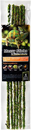 Galapagos Mossy Stakes are made with real preserved moss and a solid wood core. They are bendable to accommodate various terrarium sizes yet firm enough to support Chameleons Geckos Tree Frogs and ...