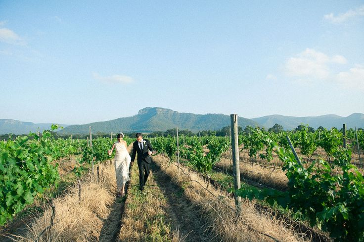 Margan Wine Hunter Valley // Ellie + Dave shot by Dominic Loneragan for Match + Feather // Sunlight natural wedding photography