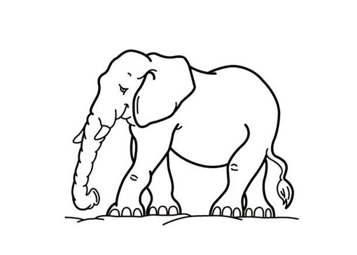cartoon elephant for my grandparents one like this and one inversed to face eachother animal coloring pagescoloring
