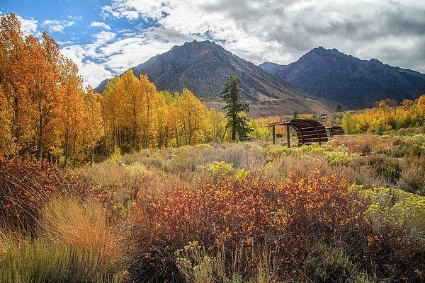 Mcgee Creek Picnic Area In Autumn