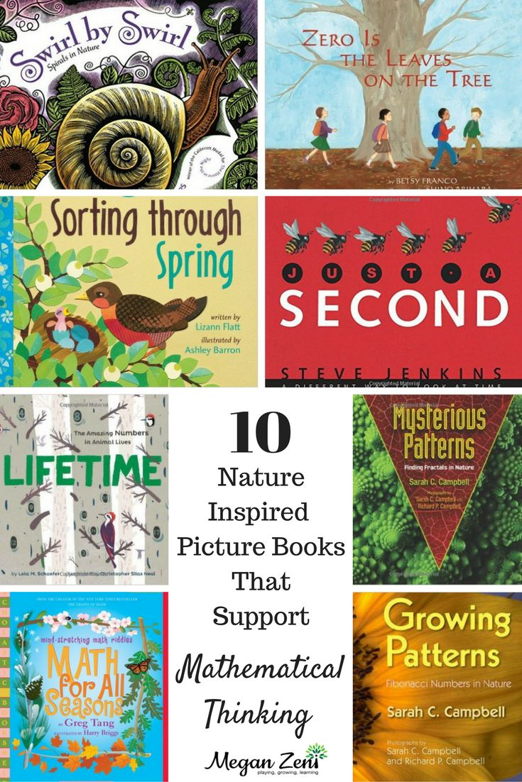 Nature Inspired Picture Books that support mathematical thinking