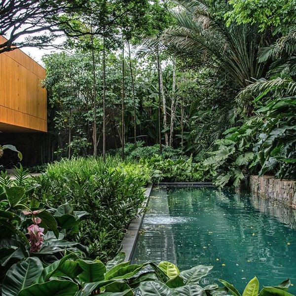 25 Natural Swimming Pool Designs For Your Small Backyard Small Backyard Pools Pool Landscaping Backyard