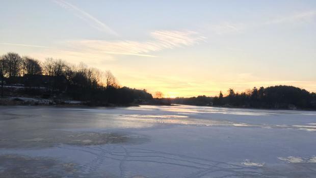 Klamme søer skal være naturperler | Nordjylland | DR