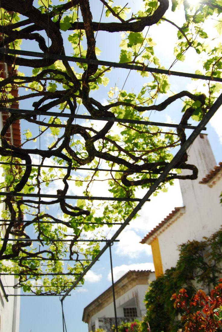 121 Best Grape Arbor Images On Pinterest  Grape Arbor, Garden Ideas And  Garden