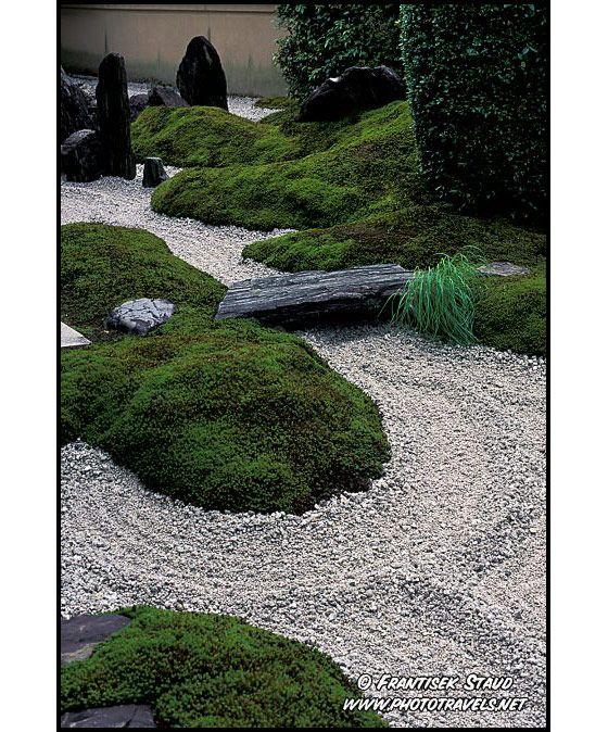 17 best ideas about modern japanese garden on pinterest for Zen garden trees