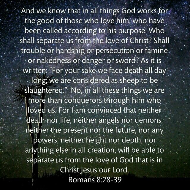 Romans 8:28-39(talk 3 day 7)