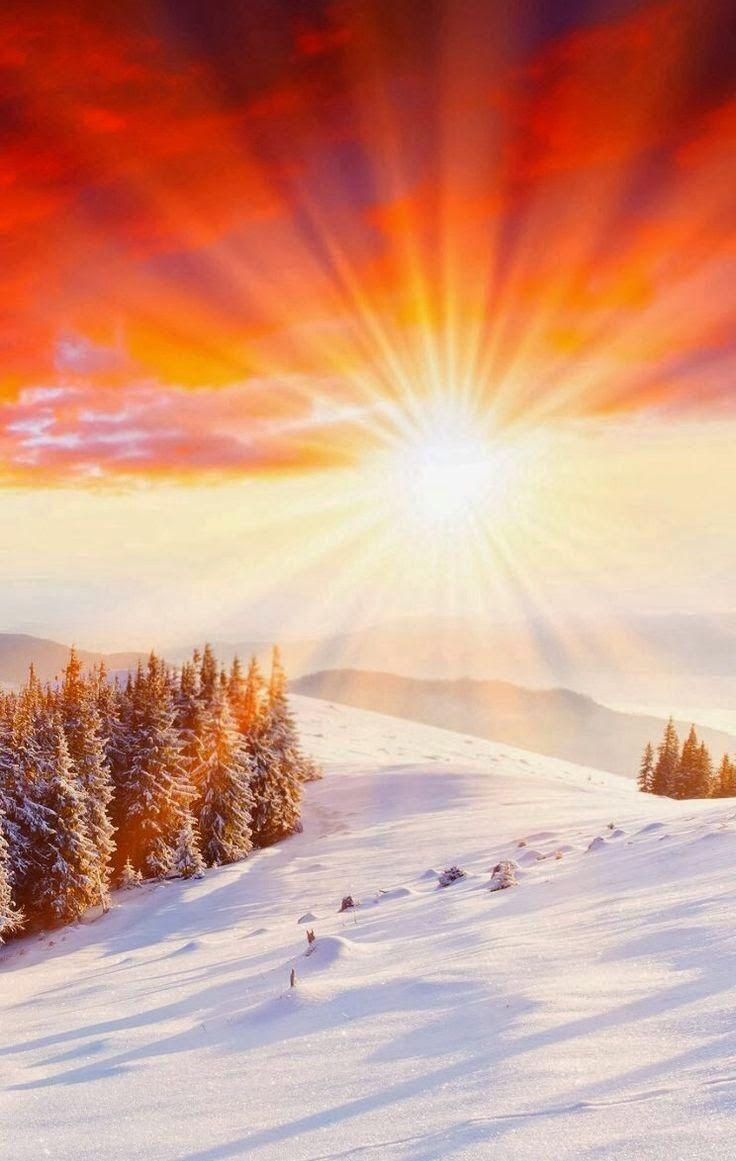 Sun in winter