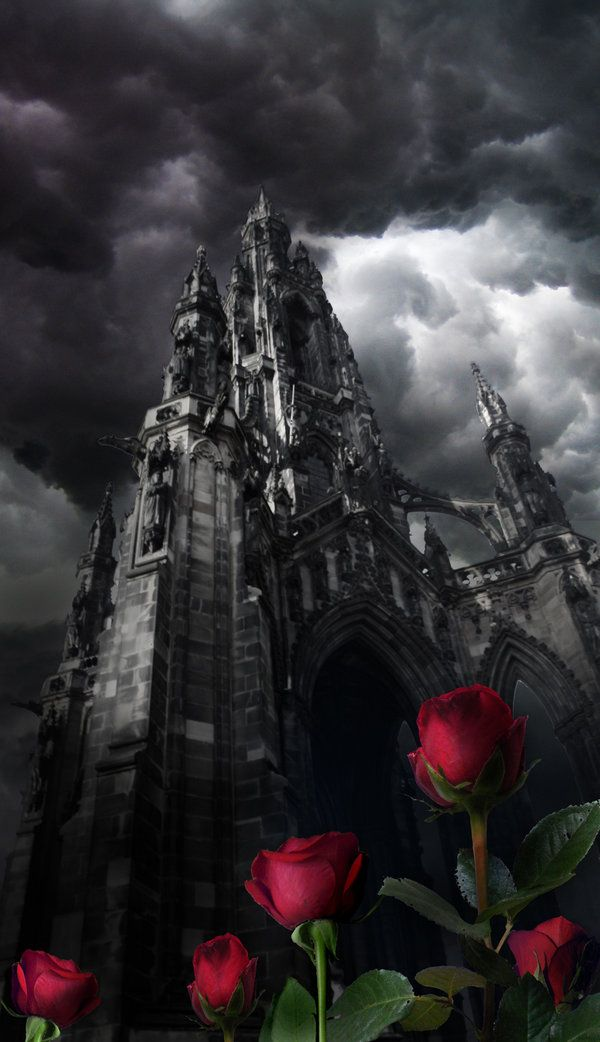 Tower Roses