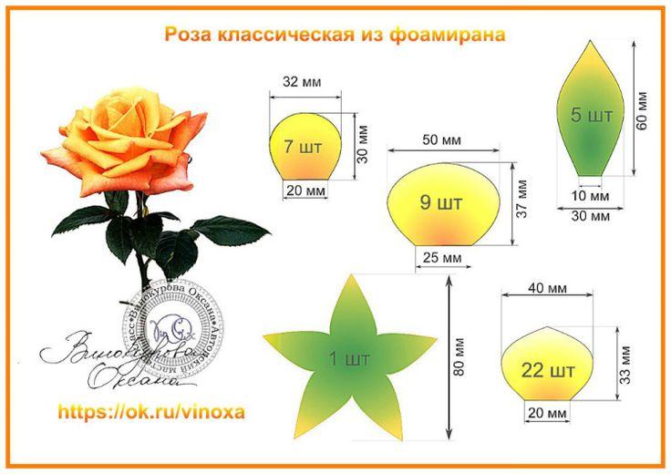 Gallery.ru / Фото #166 - шаблоны цветов-2 - Vladikana