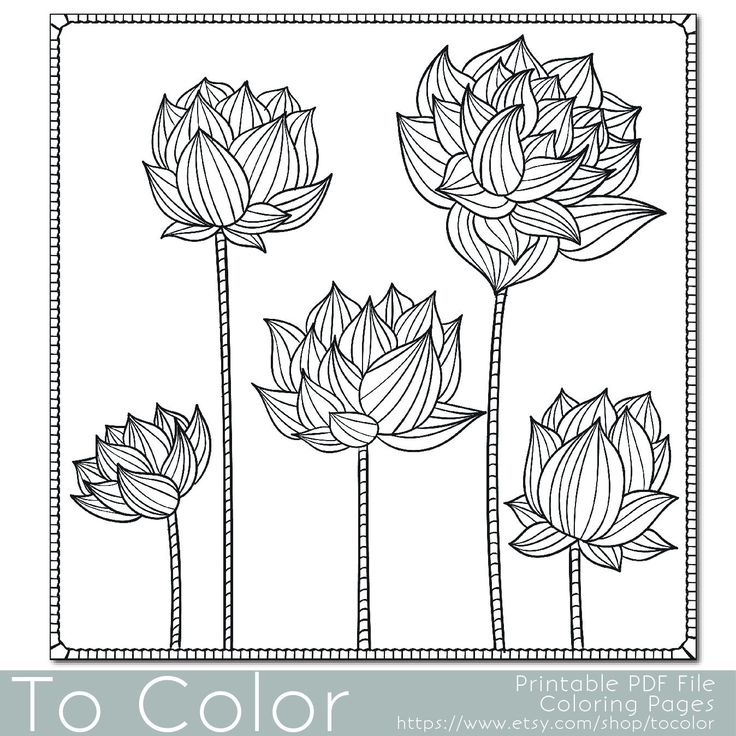 Youll Enjoy Coloring This Lotus Flower Floral PDF Page From To Color Set Of Flowers Design Is Perfect For Adults Looking