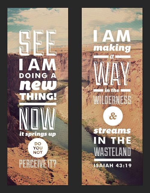 """""""For I am about to do something new. See, I have already begun! Do you not see  it?"""" (Isaiah 43:19, NLT)"""
