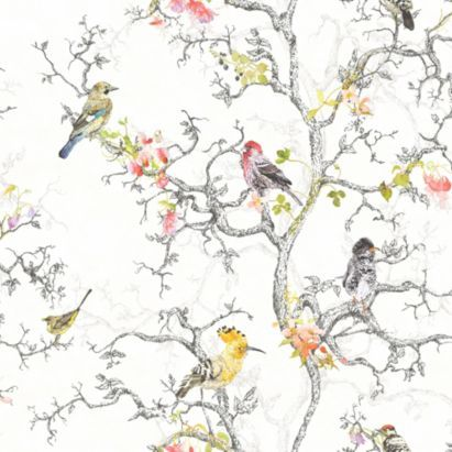 Ornithology Wallpaper in White by Statement hmm maybe this with white walls and black floor?