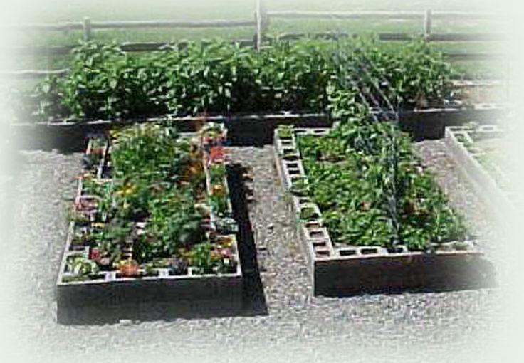 Cinder block garden box Growing with Raised Beds Pinterest