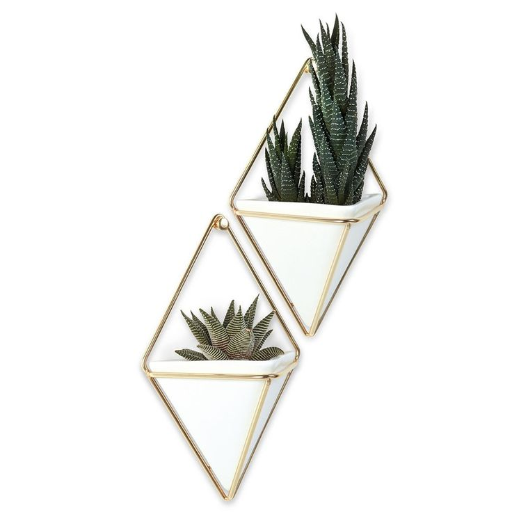 Trigg Wall Vessel | Small Set of Two