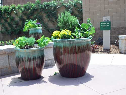 70 best Container Gardening images on Pinterest | Container garden ...