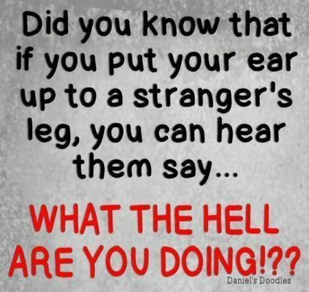 Put your ear up to a strangers leg - funny quotes - http://jokideo.com/put-your-ear-up-to-a-strangers-leg-funny-quotes/