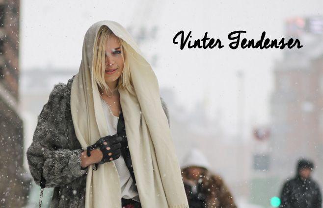 Vinter tendenser