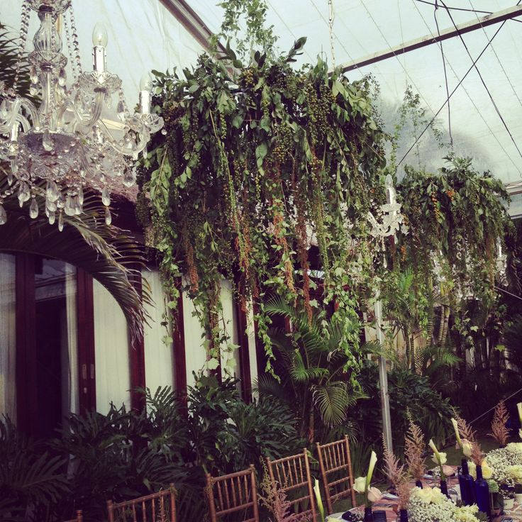 Hanging plants & Chandelier above the Bridal Table
