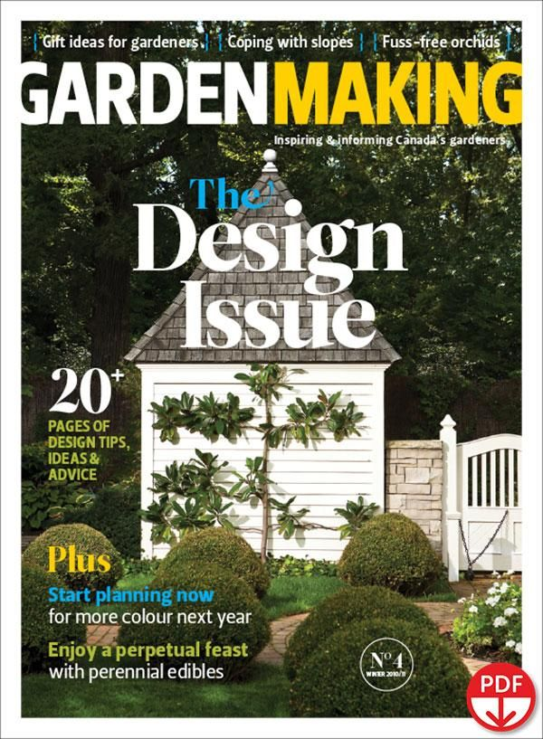 The Design Issue (Issue 4)