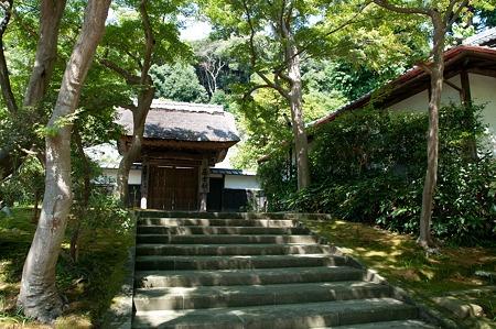 鎌倉円覚寺 Kamakura  Japan