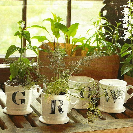"""{I could put a """"C"""" on a coffee cup and have herb growing out of it for wedding favor and reception decor} Goes with """"Coffey"""" theme."""