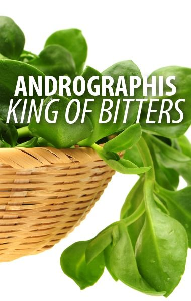 Dr Oz quizzed viewers about common skin conditions such as Poison Ivy, Psoriasis, and Impetigo. How do you get them, and which ones are contagious? http://www.recapo.com/dr-oz/dr-oz-natural-remedies/dr-oz-what-is-andrographis-modified-citrus-pectin-review-selenium/