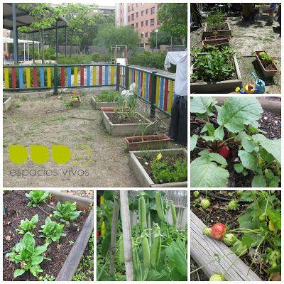 Huerto en una escuela infantil http espaciosvivos for Jardines pequenos para ninos