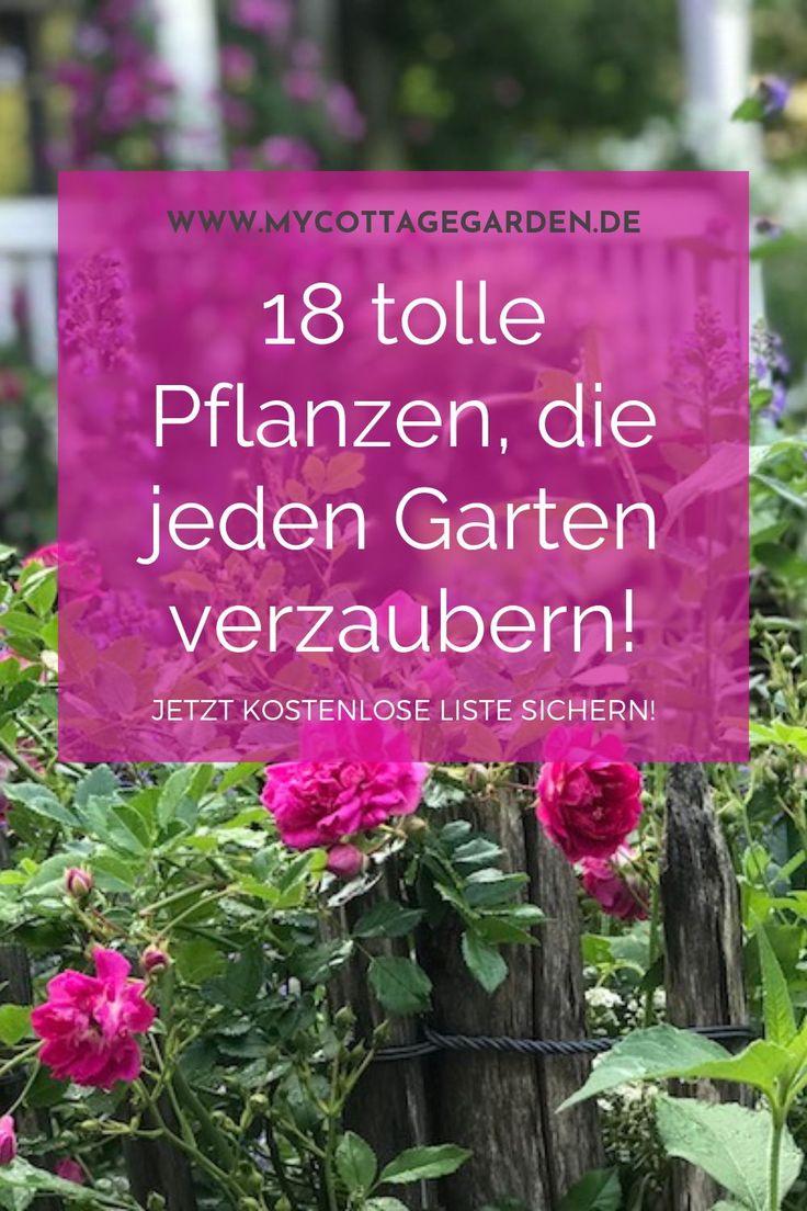 Sie träumen von einem verzauberten, romantischen Bauerngarten? Wissen Sie …