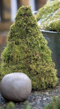 Shoegal: Fint på vår balkong med mossa och skogens gröna färg!