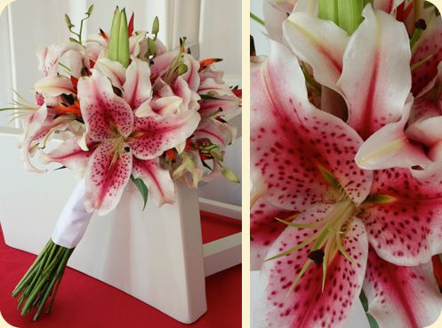 Stargazer bouquet would have been my first pick, but the silk just are not pretty. So I have gone with white amarylis