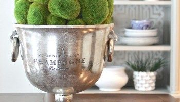Creative Ways to Decorate with Champagne Buckets