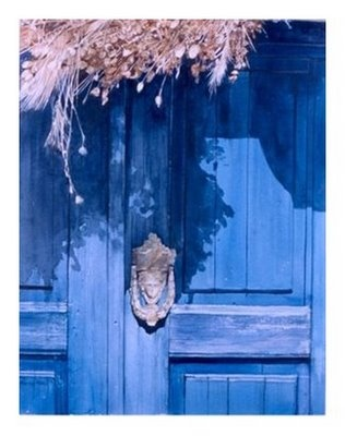 Beautiful and Pretty Blue House Door