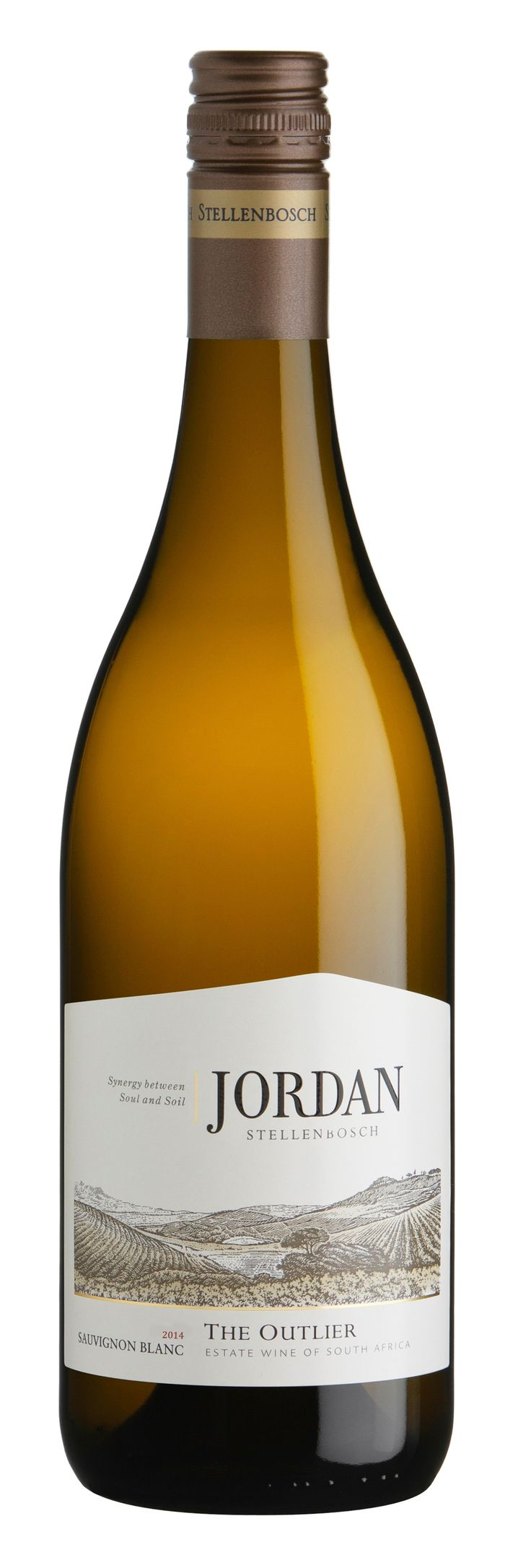 """100% Sauvignon Blanc - The Outlier. Our endeavour to produce a benchmark Sauvignon Blanc is expressed in this unique wine. Ripe fig, gooseberry and tropical fruit flavours are complemented by the gentle smoky vanilla nuances of oak – a true """"outlier""""."""